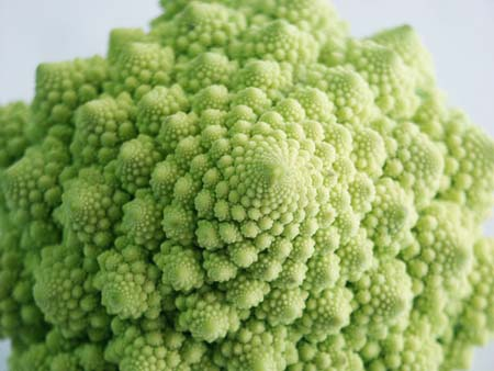Broccolo Romanesco.jpg