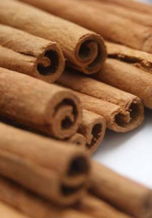 Cinnamon002.jpg