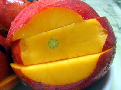 Mango (7).jpg