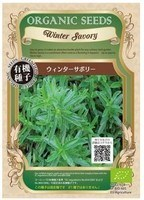 Winter Savory.jpg