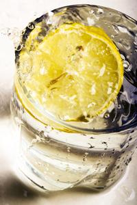 レモン 鉢植えのコツ