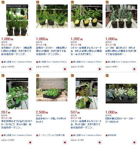herb (1).JPG