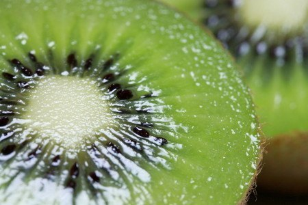 kiwifruit 007.jpg