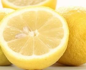 レモン 種からの育て方