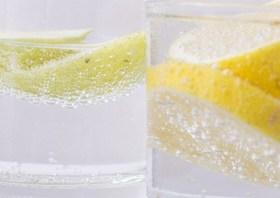 レモン 無農薬の育て方