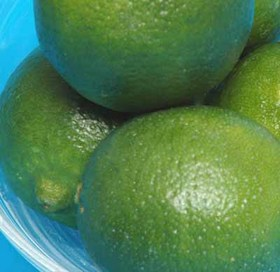 lime (1).jpg