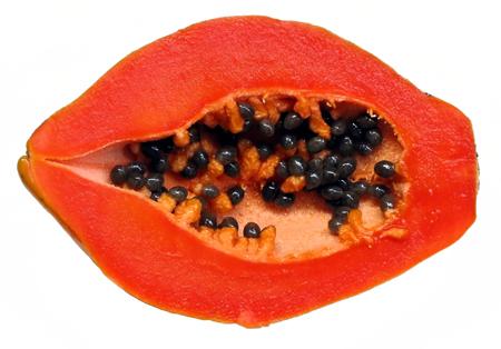 papaya (5).jpg