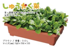 planter (6).jpg